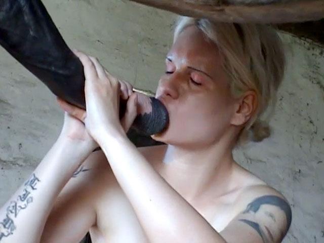 Elle regarde sa copine se faire défoncer par un cheval porno zoo