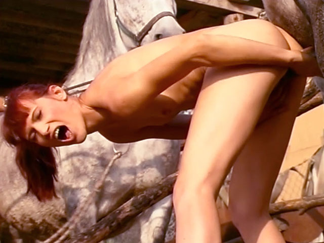 video de sexe gratuit Une accro à la bite de cheval animal porno